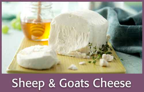 Sheep & Goats Cheese
