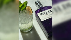 Wilde 16 gin cocktail
