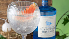 The Ultimate Irish Gin & Tonic