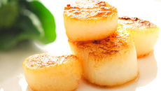 Pan Seared Scallops with Fennel Salad