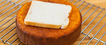 Sponge cakes moist with slice of bread