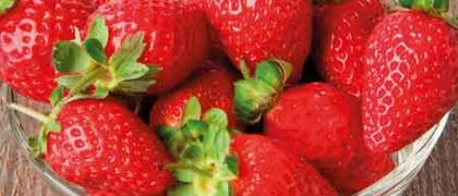 Strawberries Feature