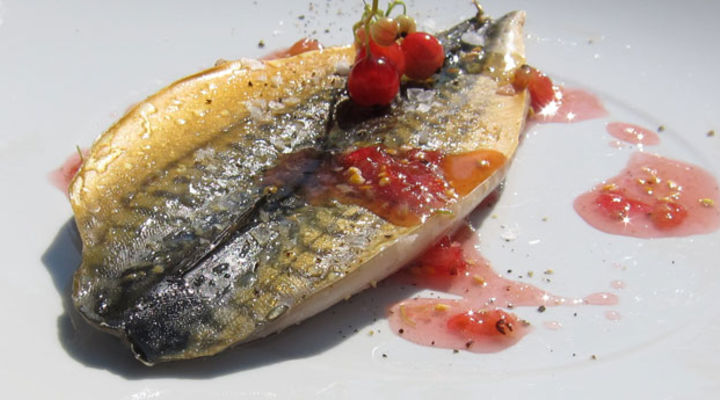 Smoked Mackerel with Redcurrant Sauce