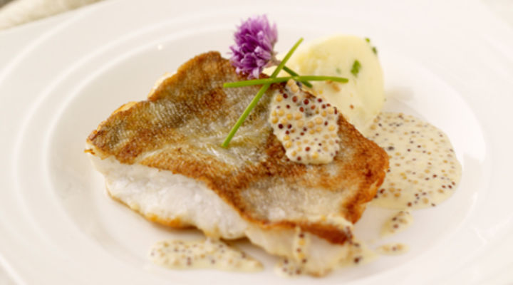 Pan Fried Cod, with Chives Mash and Wholegrain Mustard Sauce